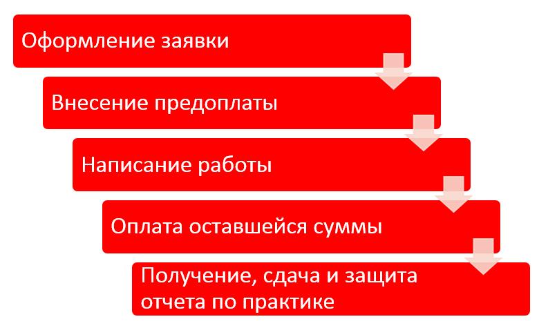 Отчет по практике в Минске быстро и недорого Отчеты по  244